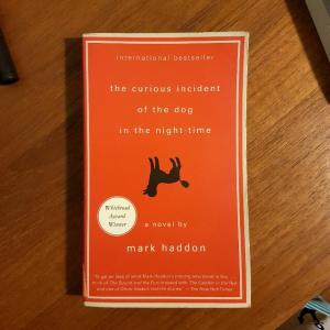 the_curious_incident_of_the_dog_in_the_night_time
